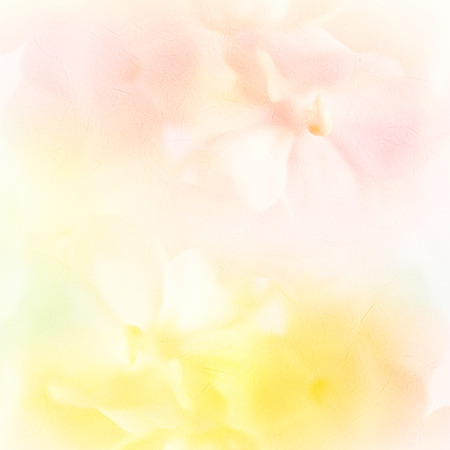 nature and beauty: vivid color roses flower in soft and blur style on mulberry paper texture