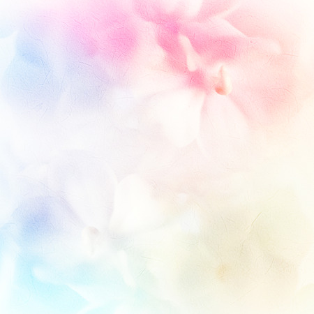 flower background: vivid color roses flower in soft and blur style on mulberry paper texture
