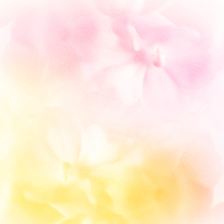 vivid color roses flower in soft and blur style on mulberry paper texture