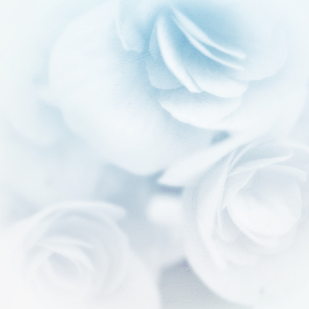 roses background: sweet color roses in soft color and blur style on mulberry paper texture Stock Photo