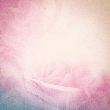 shine background: sweet color roses in soft color and blur style on mulberry paper texture Stock Photo