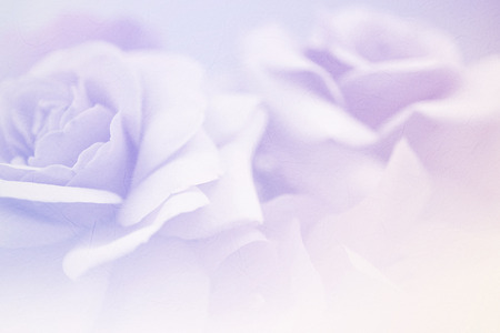 pastel color: Sweet flowers in vintage color style on mulberry paper texture Stock Photo