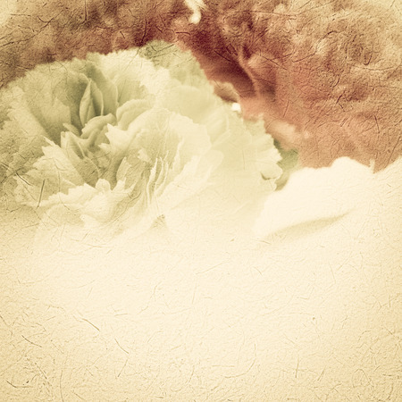 Carnations in vintage color style on mulberry paper texture