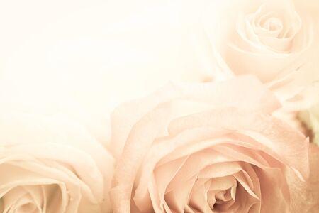 le rose in background stile vintage