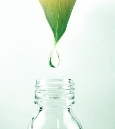water drop from leaf to the bottle