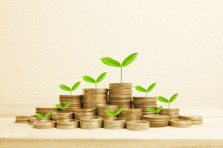money in hand: Growing plant on row of coin money for money concept Stock Photo