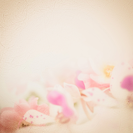 romantic beach: sweet pink roses in soft color on mulberry paper texture for romantic background Stock Photo