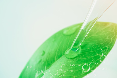 Kropla wody z liści i laboratorium chemii naturalnej koncepcji Zdjęcie Seryjne