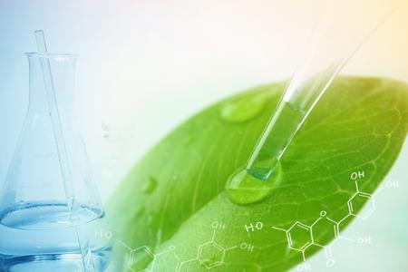 gota de agua de la hoja y de laboratorio para el concepto de química natural Foto de archivo