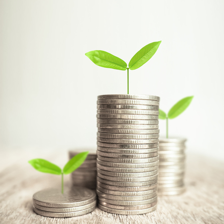 Growing plant on rows of coin money for finance and banking concept Stock Photo