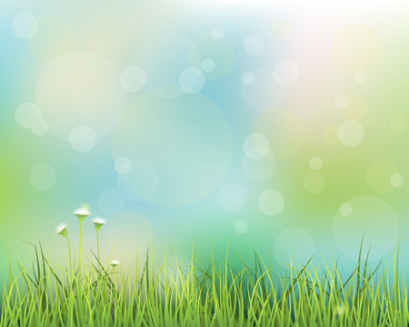 summer field: Vector illustration abstract green grass. Spring nature field with little white flowers meadow and water drops on green leafs, with bokeh effect on blue-green pastel colorful background .Blank space for your design