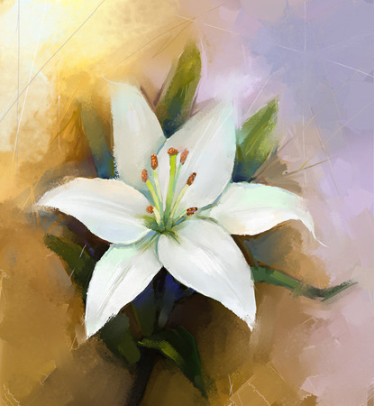 White lily flower.Flower oil painting Stock Photo