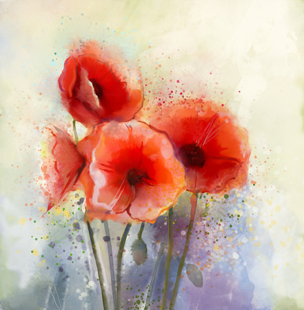 flower meadow: Water color red poppy flowers painting. Flowers in soft color and blur style for background. Vintage painting flowers