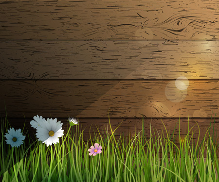 grass close up: Vector illustration Green grass, Wildflowers, White Gerbera- Daisy flowers and sunlight effect over wood fence with bokeh. Spring nature background. Copy space for content or your design Illustration