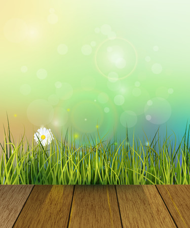 Vector illustration wood floor and Green grass, white Gerbera- Daisy flowers meadow . Water drops dew on green leaves. Blue-green pastel color and Bokeh effect at background. Spring nature background.