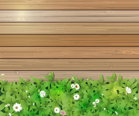grass close up: Vector illustration Spring nature background. Green grass and leaf plant, White Gerbera, Daisy flowers and sunlight over wood fence with water dew drops. Blank space for content or your design