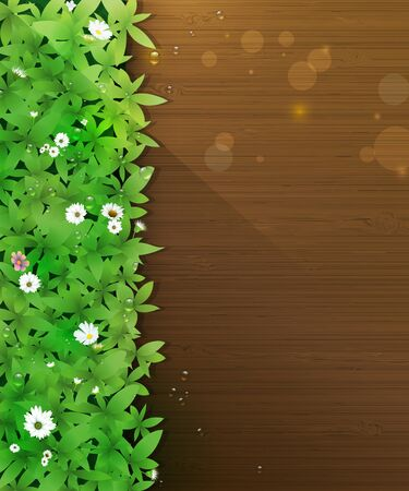 bokeh background: Vector illustration Spring nature background. Green grass and leaf plant, White Gerbera, Daisy flowers and sunlight over wood floor with water dew drops. Blank space for content or your design Illustration