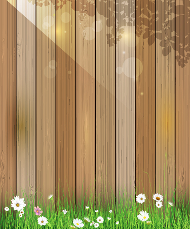 Vector illustration Spring nature background. Green grass and leaf plant, White Gerbera, Daisy flowers and sunlight over wood fence with bokeh effect. Blank space for content or your design