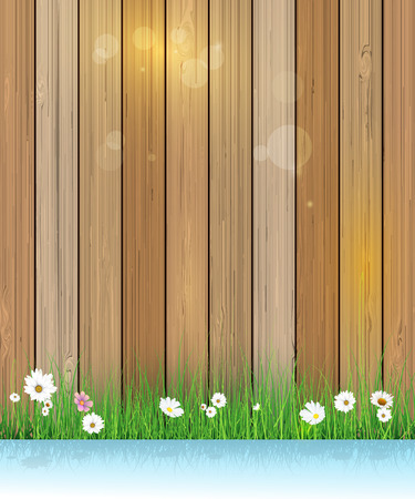 gerbera daisy: Illustration Spring nature background. Green grass and leaf plant, White Gerbera, Daisy flowers and sunlight over wood fence with shadow over water. Blank space for content or your design Illustration