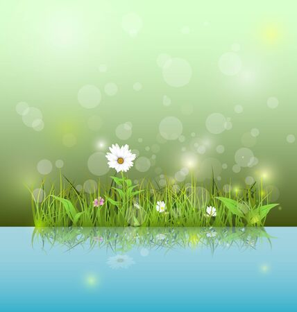water reflection: Illustration Green grass and leaves with white daisy, wildflower and shadow reflection on light blue water. Soft green color with bokeh background. Spring flower background Illustration