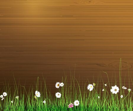 grass close up: Illustration Spring nature background. Green grass and leaf plant, White Gerbera, Daisy flowers and sunlight over wood fence. Blank space for content or your design Illustration