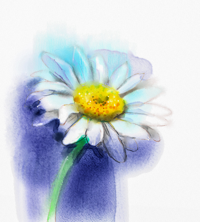 gerbera daisy: Abstract watercolor painting white gerbera, daisy flower on blue color background. Hand painted white floral water color. Sketch flower paint in pastel colors. Painted flower sketch. Stock Photo