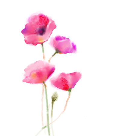 Watercolor painting poppy flower isolated flowers on white stock photo watercolor painting poppy flower isolated flowers on white background pink and red poppy flower painting hand painted watercolor floral mightylinksfo