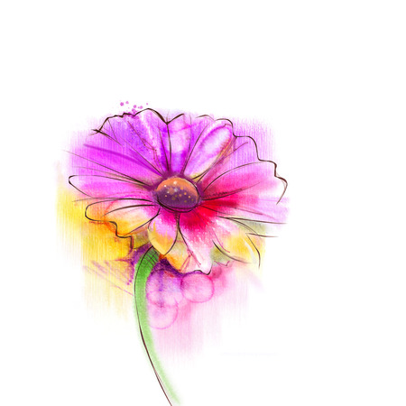 water color: Abstract watercolor painting red gerbera, daisy flower on white paper background. Hand painted red floral water color. Sketch flower paint in pastel colors. Painted watercolour flower sketch.