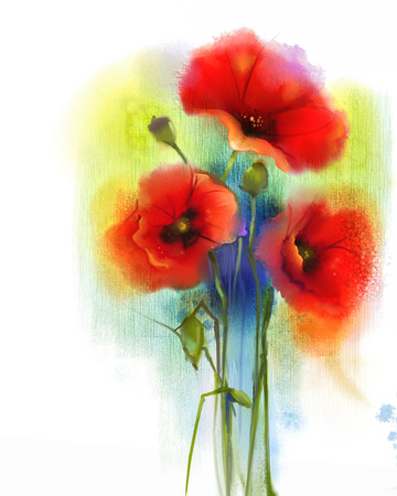 papaver: Watercolor red poppy flower painting. Hand paint poppies flowers in soft color and blur style, Blue green color background. Hand painted watercolour, Spring floral seasonal nature background. Stock Photo