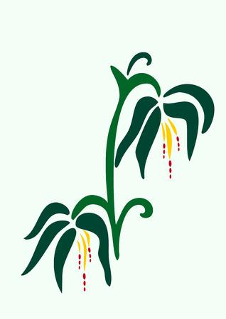 umbel: Stylized Flower Illustration Illustration