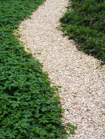 chaff: chaff path in the garden