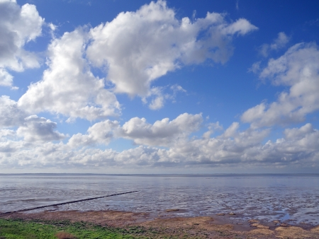 wadden: beautiful wadden sea
