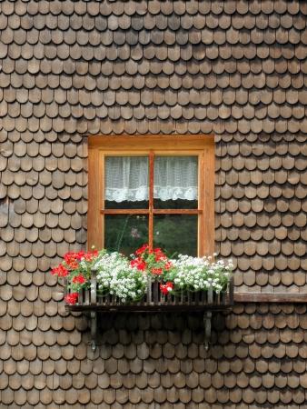 목재 포진으로 둘러싸인 꽃과 고대의 나무 창 스톡 콘텐츠