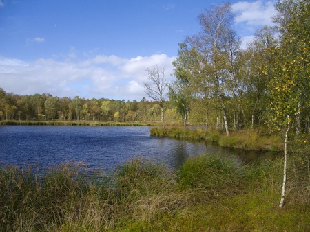 lakefront: a beautiful blue pond in the moor in autumn Stock Photo
