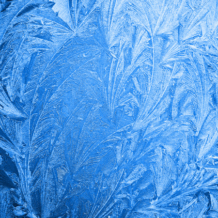 amorphous: abstract ice flower pattern background