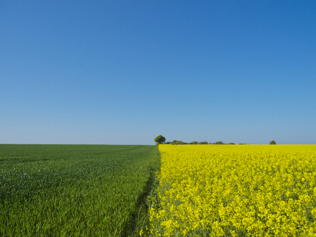 three colors built by cultivated symmetric fields an sky photo