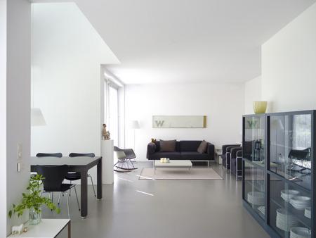 moderne eigen woon-en eetkamer met een kopie ruimte voor uw eigen afbeeldingen Stockfoto