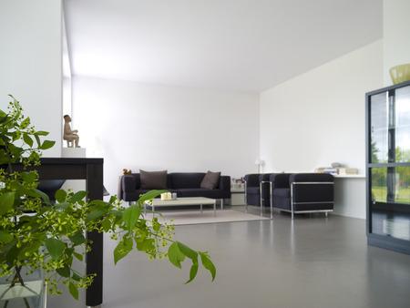 moderne eigen woon- en eetkamer met planten op de voorgrond Stockfoto