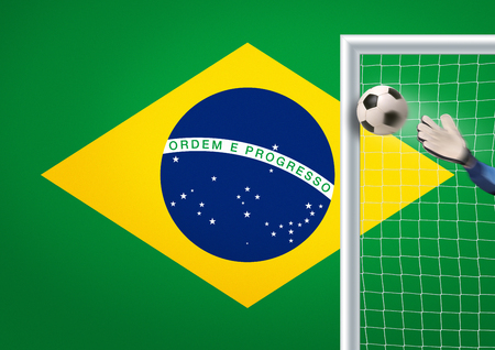 goalpost: goalkeeper in action in brazil trying to defend