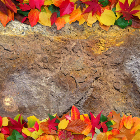 sordid: colorful autumn leaves on grungy rusty background with copy space