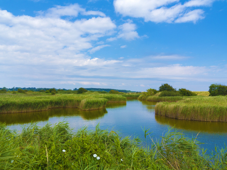 biotope: landscape with pond in the middle of the fen