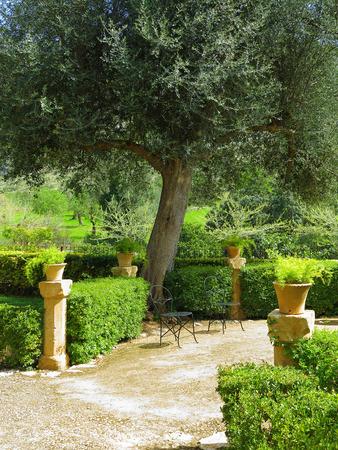 garten terrasse mediterran – sweetmenu, Garten und erstellen