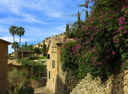 counrty: blooming bougainvillea in the mediterranean village Dei�? in the Tramuntana mountains, majorca, spain Stock Photo