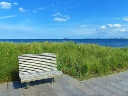 sea grass: wooden bench, lyme grass and view to the sea