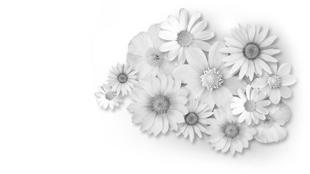 bouquet of white flowers isolated on white background