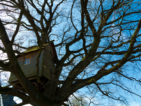 old nostalgic weathered wooden treehouse high up in a winter tree Stock fotó