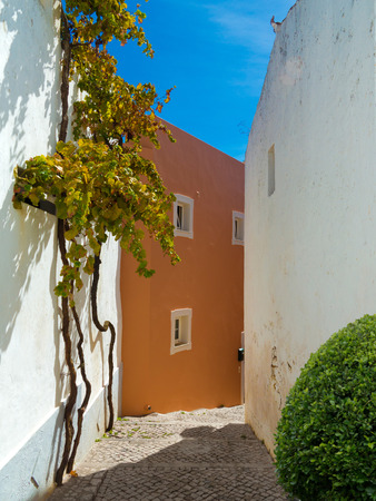 cobblestone stairway lane leads downhill through the houses of