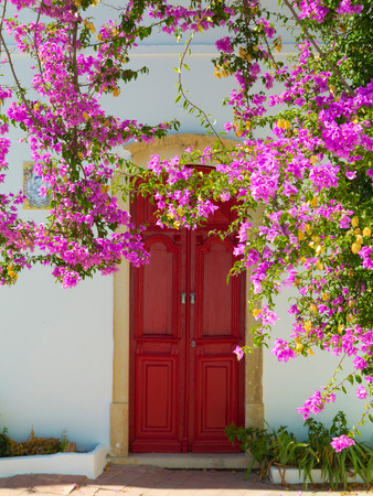mediterranean home entrance with blooming pink bougainvillea with vintage front door in the background 免版税图像