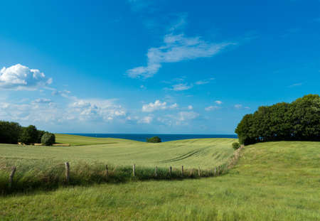 rural countryside landscape with field and pasture and the coast of the baltic sea in the background