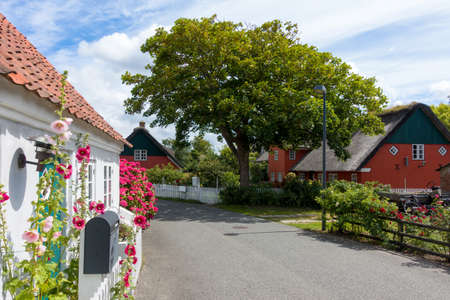 blooming flowers and beautiful old houses in the village of Nordby on the island of Fanø in Denmark